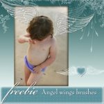 freebie-angel-wings-brushes-small-TN